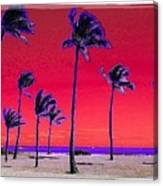 Eight Palms Canvas Print