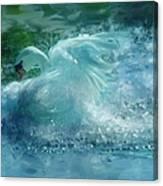 Ein Schwan - The Swan Canvas Print