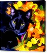 Einstein The Cat Canvas Print