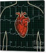 Ekg And Heart Over Torso Canvas Print
