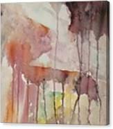 El Genio Curioso 7 Canvas Print