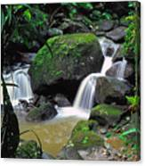 El Yunque National Forest Waterfall Canvas Print