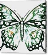 Election 2020 Presidential Candidate Catherien Lott Usa Green Butterfly Canvas Print