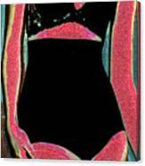 Electric Lingerie Canvas Print