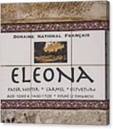 Eleona Canvas Print