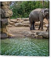 Elephant And Waterfall Canvas Print