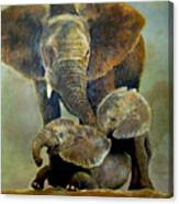 Elephant Familly Canvas Print