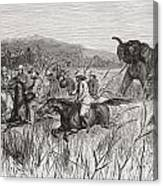 Elephant Hunters In The 19th Century Canvas Print