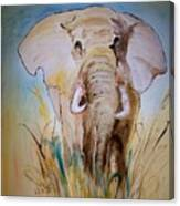 Elephant In The Field Canvas Print