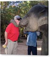 Elephant Kissing Man Holding Bananas Canvas Print