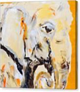 Elephant Orange Canvas Print