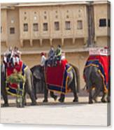 Elephant Ride 2 Canvas Print