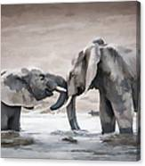 Elephants From Africa Canvas Print
