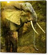 Elephants In The Golden Light Canvas Print