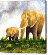 Elephants - Mother And Baby Canvas Print