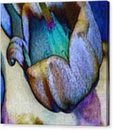 Elfin Blue Canvas Print