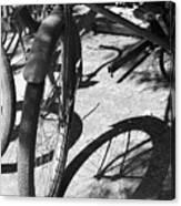 Elgin Bicycle Shadow Canvas Print