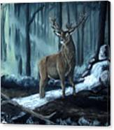 Elk In The Morning Canvas Print