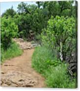 Elk Mountain Trail Canvas Print