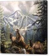Elk Ridge Canvas Print