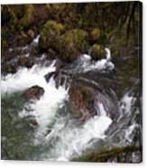 Elkhorn Creek 2 Canvas Print