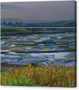 Elkhorn Slough Canvas Print