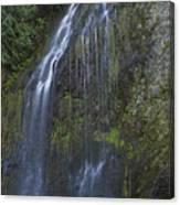 Elkview Falls Canvas Print