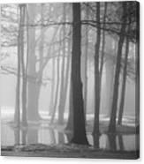 Ellacoya Fog - January Thaw Canvas Print