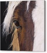Ellroy Canvas Print