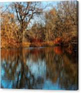 Elm By The Connecticut River In Autumn Canvas Print