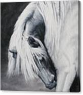 Elsa's Itch Canvas Print