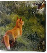 Eluding The Fox Canvas Print
