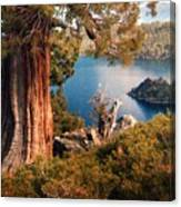 Emerald Bay Overlook Canvas Print