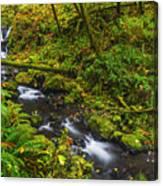 Emerald Falls And Creek In Autumn  Canvas Print