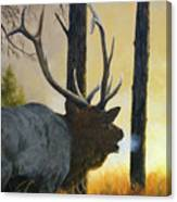Emerging Monarch - Elk Canvas Print