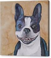 Emma The Boston Terrier Canvas Print