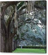 Emmet Park In Savannah Canvas Print