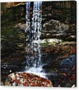Emory Gap Falls Canvas Print