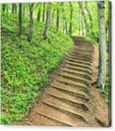 Empire Bluffs Trail Steps In Michigan Canvas Print