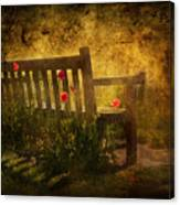Empty Bench And Poppies Canvas Print