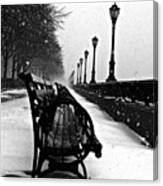 Empty Benches In The Snow Canvas Print