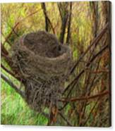 Empty Nest In Autumn Canvas Print