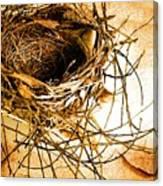 Empty Nest Canvas Print