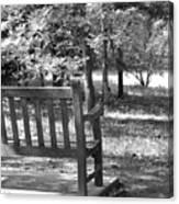 Empty Park Bench Canvas Print