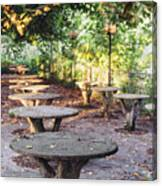 Empty Picnic Tables In The Early Fall With Fallen Leaves Canvas Print