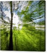 Enchanted Forest 5 Canvas Print