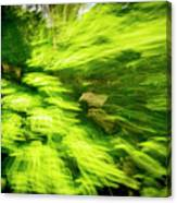 Enchanted Forest 6 Canvas Print
