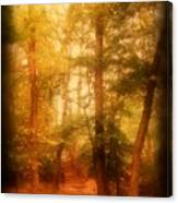 Enchanted Path 2 - Allaire State Park Canvas Print