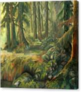 Enchanted Rain Forest Canvas Print