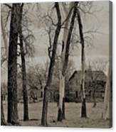 Home In The Wood Canvas Print